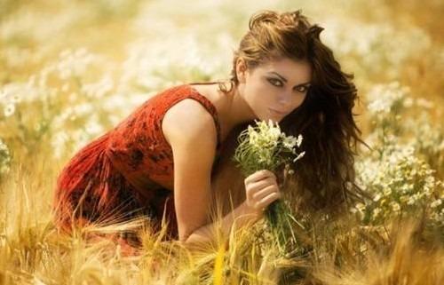 Сбор трав для волос