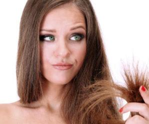 Сухие волосы: что делать и как ухаживать